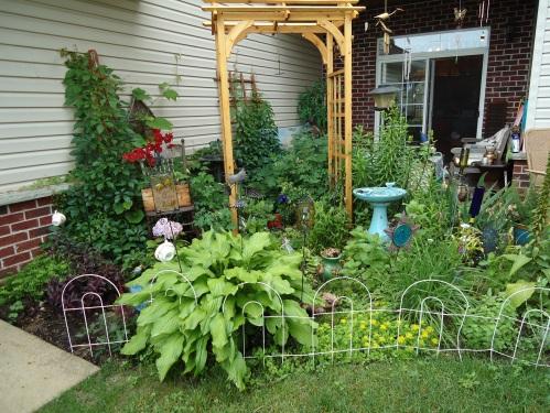 Late June Garden 2013