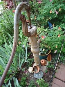 Garden June 1 - 2