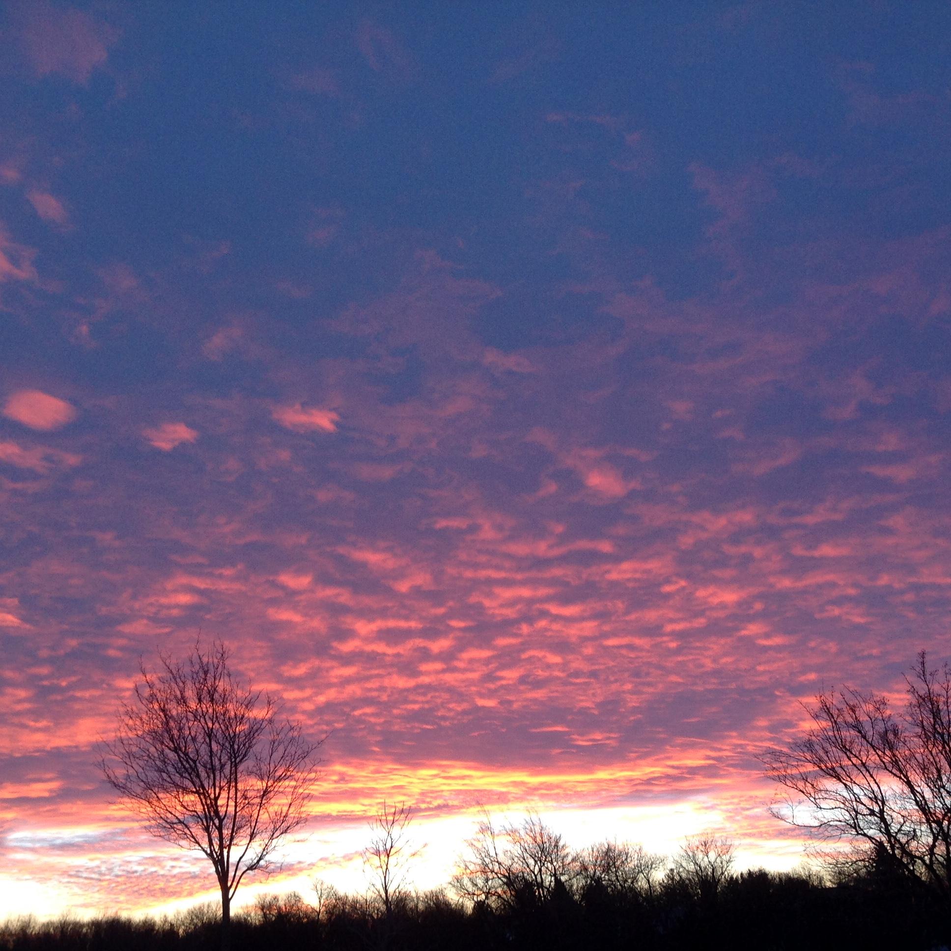 January Sunrise