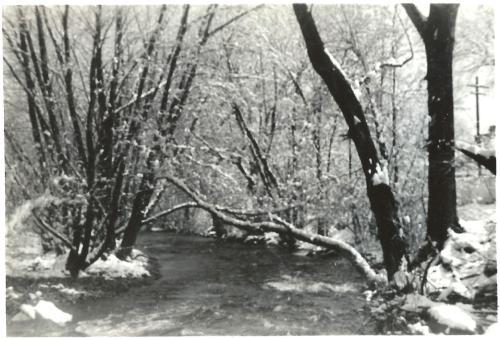 My Childhood River